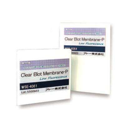 ClearBlot Membrane P