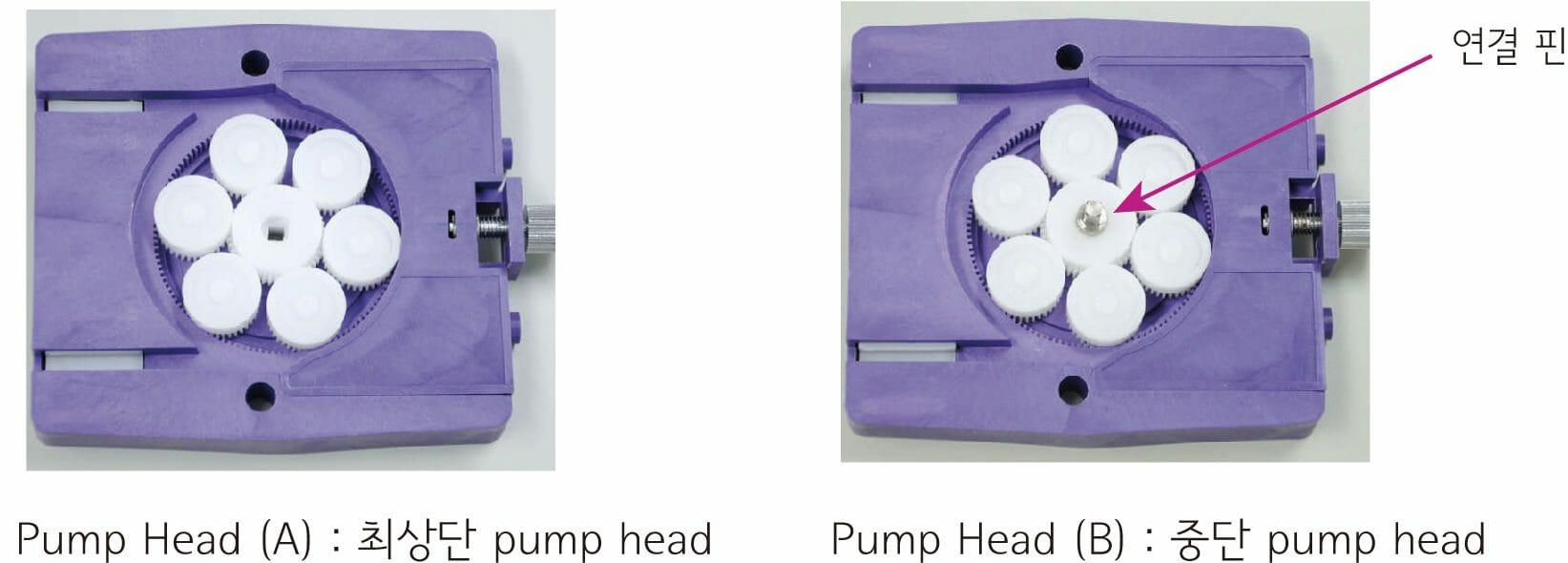 pump head 비교