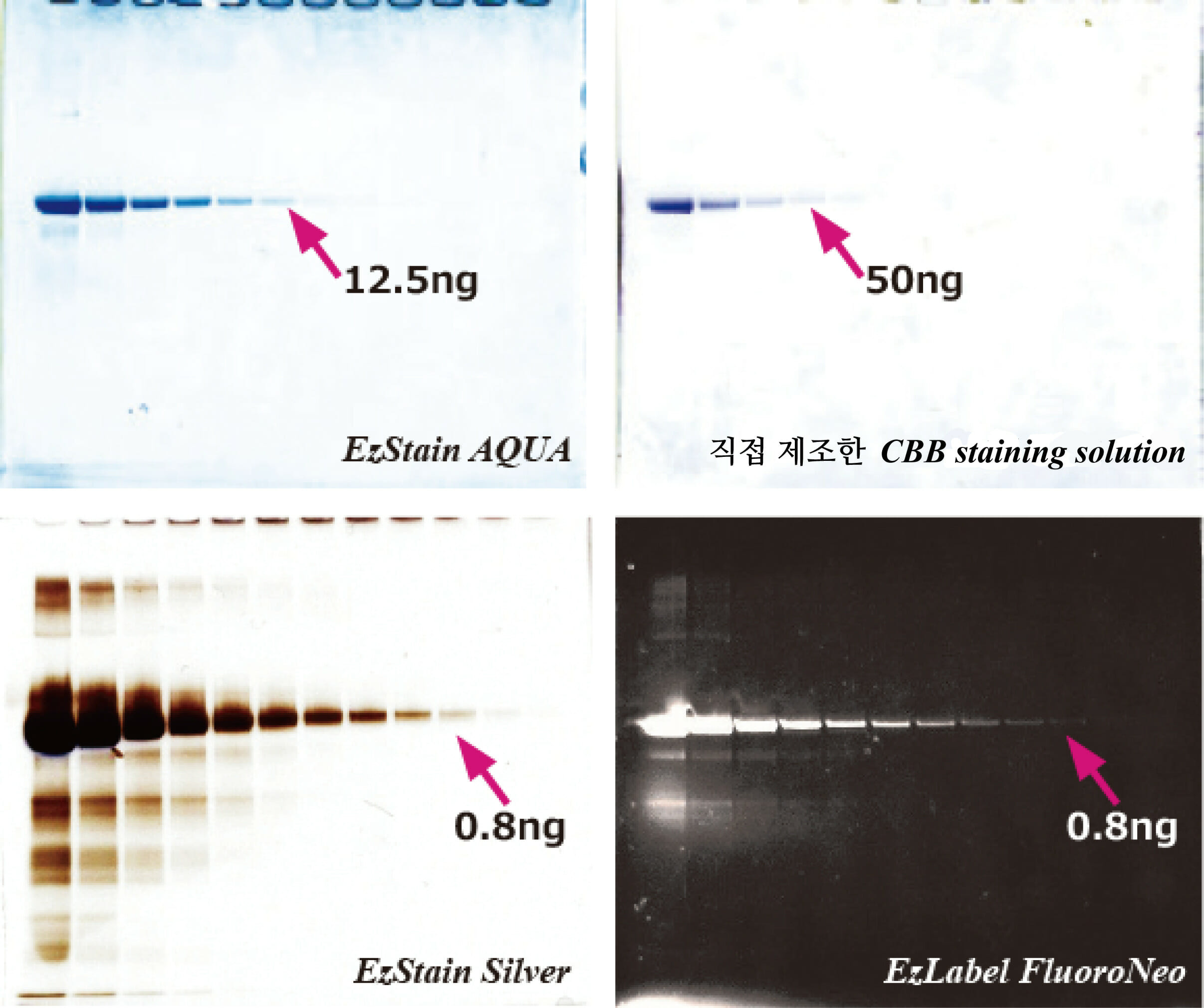 difference depending on staining method