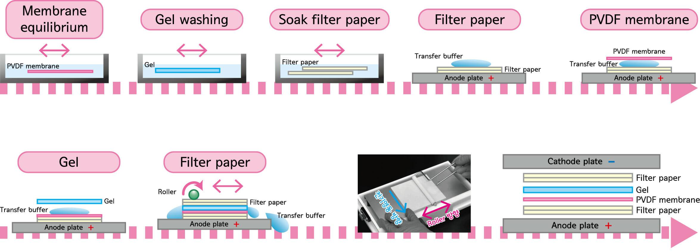 Transfer setting workflow